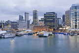 Auckland Ferry Terminal and Waterfront. Photographic Print by David Madison