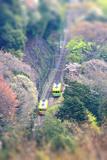Miniature Train Photographic Print by yohey yamagata