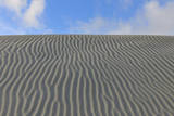 Dunes Photographic Print by Raimund Linke