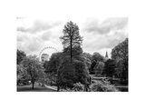 View of St James's Park Lake and Big Ben - London - UK - England - United Kingdom - Europe Photographic Print by Philippe Hugonnard