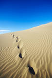Footprints in Sand Dune. Photographic Print by Thomas Northcut