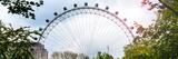 The Millennium Wheel View - UK Landscape - London - UK - England - United Kingdom - Europe Photographic Print by Philippe Hugonnard