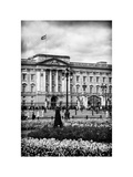 UK Landscape - Buckingham Palace - London - UK - England - United Kingdom - Europe Photographic Print by Philippe Hugonnard
