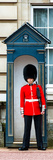 Buckingham Palace Guard - London - UK - England - United Kingdom - Europe - Door Poster Photographic Print by Philippe Hugonnard