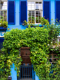 Blue House in Notting Hill - London - UK - England - United Kingdom - Europe Photographic Print by Philippe Hugonnard