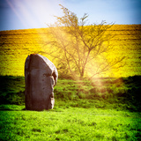 Natural Meadow Landscape and Abstract of Stones - Pewsey - Wiltshire - UK - England Photographic Print by Philippe Hugonnard