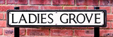 Ladies Grove Sign - St Albans - Hertfordshire - London - UK - England - United Kingdom - Europe Photographic Print by Philippe Hugonnard