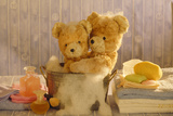 Teddy Bear X2 Teddies at Bathtime Photographic Print