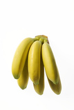 Bunch of Bananas Photographic Print