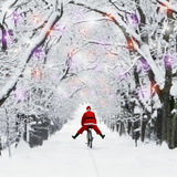 Father Christmas Riding Through Avenue in Winter Fotografie-Druck