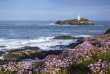 Godrevy Island and Lighthouse from Gwithian Thrift Photographic Print