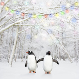 Gentoo Penguin in Winter Woodland with Snow Photographic Print
