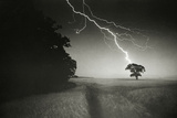 Lightning Striking a Tree Photographic Print