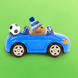 Hamster Driving Miniature Sports Convertible Car Photographic Print