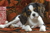 Cavalier King Charles Dog Puppy Photographic Print