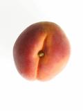 Fruit Apricot Photographic Print