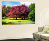 Wall Mural - Natural Floral Landscape - Hertfordshire - UK - England - United Kingdom - Europe Wall Mural by Philippe Hugonnard