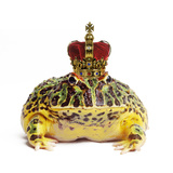 Frog Prince Wearing Crown Fotografisk tryk af Andy and Clare Teare