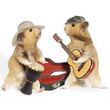 Hamsters Playing Musical Instruments Lámina fotográfica