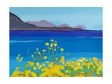 Corn Marigolds, 2014 Giclee Print by Sarah Gillard