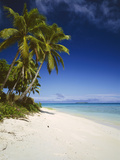 Ovalau Island Tropical Beach Scene with Palm Trees Photographic Print