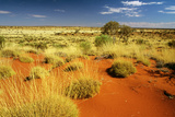 Little Sandy Desert Western Australia Photographic Print