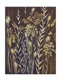 Grasses, 2014 Giclee Print by Sarah Gillard