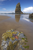Ochre Sea Stars Exposed at High Tide with Sea Stack Photographic Print