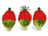 Brussels Sprout with Red and Green Woolly Hat Photographic Print