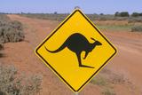 Australia Road Sign Warning of Kangaroos Photographic Print