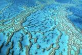 Australia Great Barrier Reef Hardy Reef Fotografie-Druck