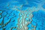 Great Barrier Reef Marine Park, Hardy Reef Photographic Print