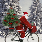 Father Christmas on Bicycle Cycling Past Fir Fotoprint
