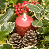 Christmas Candle and Holly Berries Photographic Print