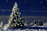 Norway Spruce Tree with Lights On Photographic Print