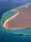 Australia Shark Bay, World Heritage Area (Unesco) Photographic Print