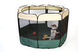 Puppy in Play Pen Photographic Print