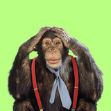 Chimpanzee Wearing Tie and Braces Photographic Print