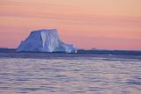 Icebergs at Sunset Photographic Print