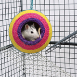 Pet Rat in Toy in Cage Photographic Print