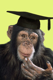 Chimpanzee in Mortarboard Photographic Print