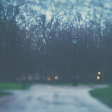Bleak Bare Trees Fotografie-Druck von Laura Evans