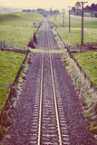Old Train Line Photographic Print by Steve Allsopp
