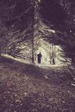 Man Walking Through Woods Photographic Print by Steve Allsopp