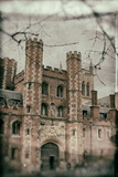 Cambridge University Photographic Print by Tim Kahane