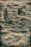 Grave Stones Photographic Print by Tim Kahane