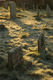 Sun Light on Gravestones Photographic Print by Tim Kahane