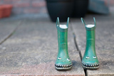 Green Wellies Photographic Print by Clive Nolan