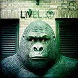 Gorilla Sculpture Fotografisk tryk af Craig Roberts