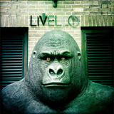 Gorilla Sculpture Photographic Print by Craig Roberts